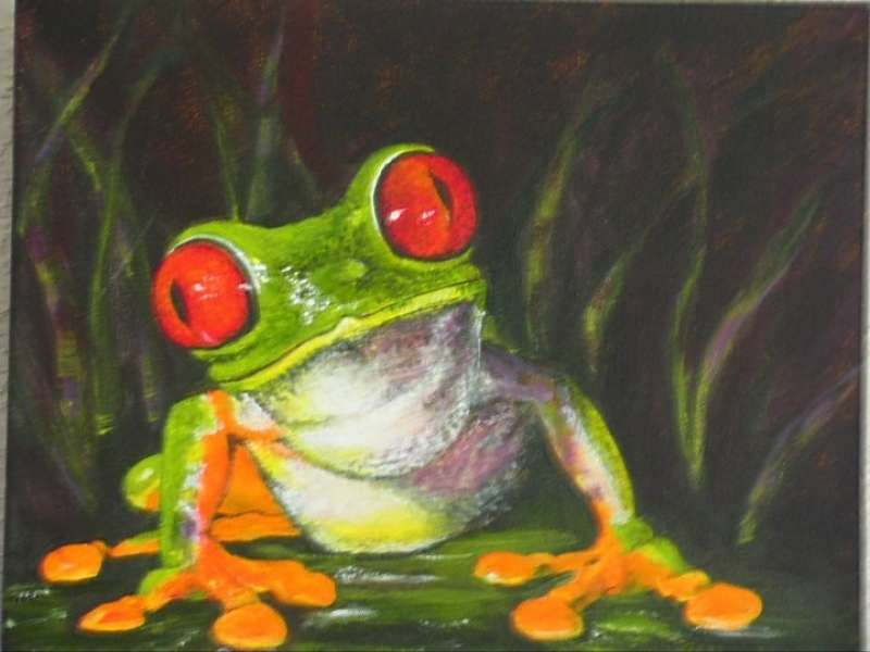 Inquisitive Frog